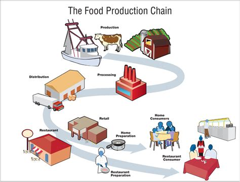 what s our children sick how industrial food is causing an epidemic of chronic illness and what parents and doctors can do about it books image the food production chain the food production