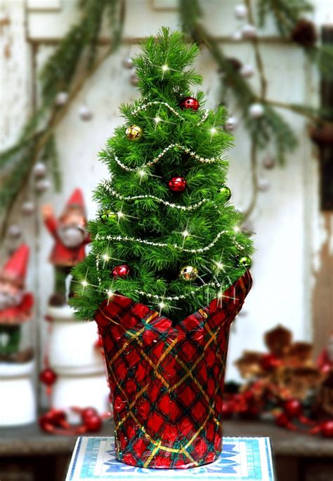 decorate with mini christmas trees learn how from the pros the 50 best and most inspiring christmas tree decoration