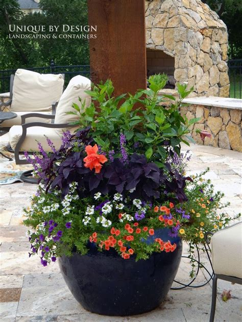 Plant Pot Ideas For The Patio by 704 Best Container Gardening Ideas Images On