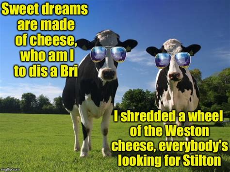 Sweet Dreams Are Made Of Memes - inspired by a post from dutchess county fairgrounds imgflip