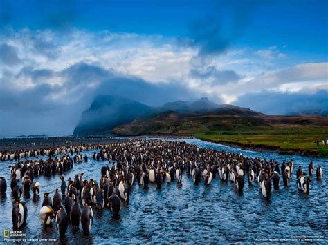 the national 100 most famous national geographic hd wallpaper part 10