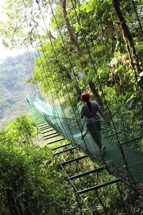 costa rica turisti per caso monteverde canopy tour viaggi vacanze e turismo