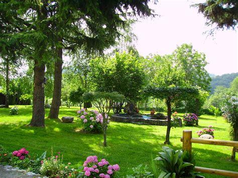 giardini in casa il giardino di casa foto immagini paesaggi cagna