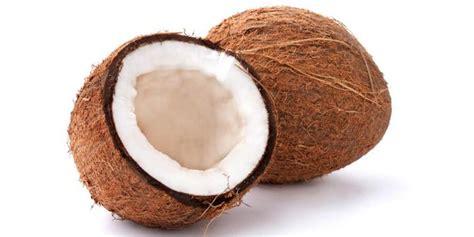 Minyak Kelapa Tunggal kelapa buah tunggal dengan sejuta manfaat merdeka