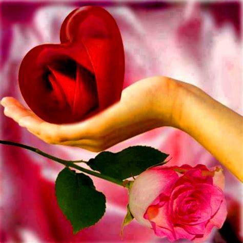 imagenes flores y nombres fotos de flores bonitas fotos de flores de otono para