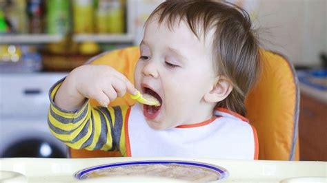alimentazione bimba 10 mesi svezzamento mai troppo riso ai bambini maternita it