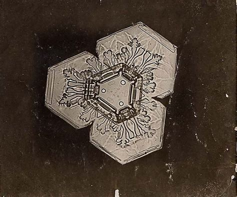 snowflake bentley museum 184 best images about snowflakes and crystals on pinterest