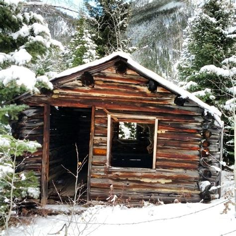 Bugs Cabins by