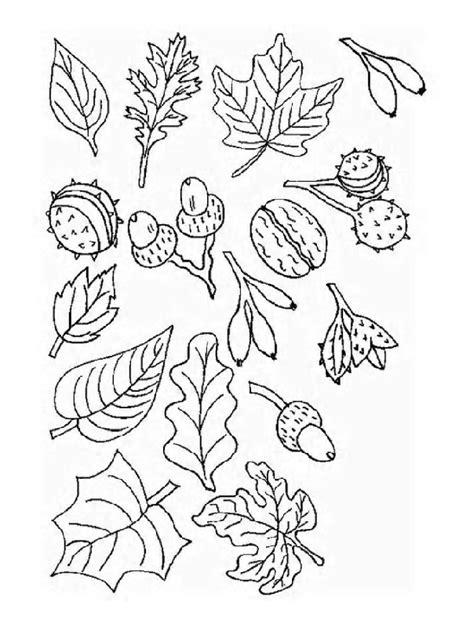 tree leaf coloring pages tree leaves coloring page