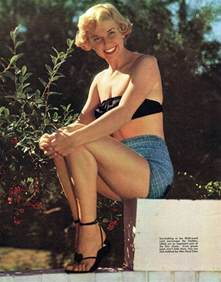 Best Bathtub Pillow Doris Day S Feet