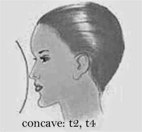 concave head shapes face shapes round expressing your truth blog