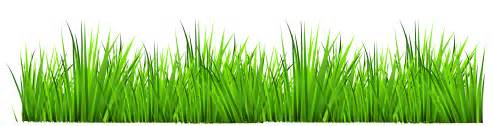Gallery free clipart picture grass grounds coveri grass decor