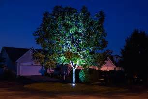 outdoor up lighting for trees