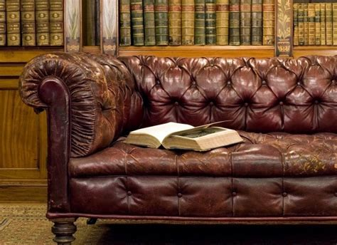 oil on leather couch professional cleaners do not clean leather with olive oil