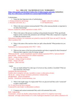 carbohydrates webquest answers organic macromolecules worksheet carbohydrates lipids