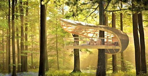 b b casa sull albero tree house