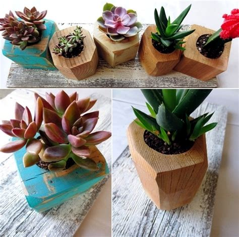 beautiful House Plant Decoration Ideas #4: succulent-plants-with-pots-of-original-flowers-as-decoration-in-the-house-1-121.jpg