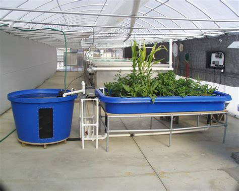 aquaponics overview nourish the planet