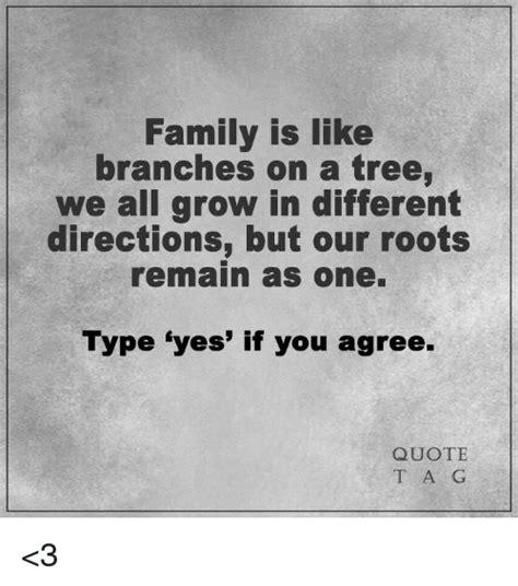 tree memes of 2016 on sizzle trees