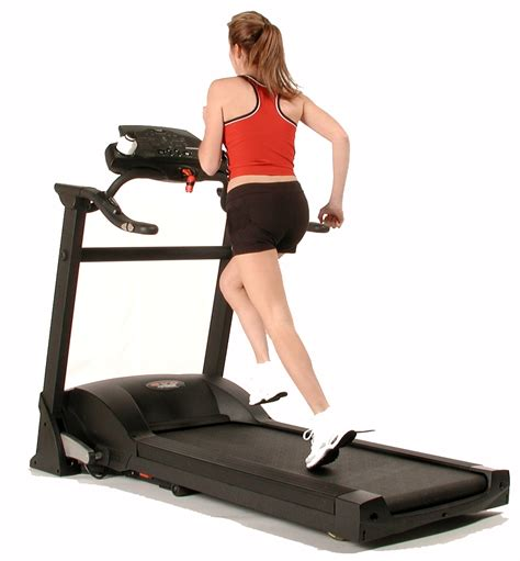 exercise equipment top 5 equipment for equipments zone