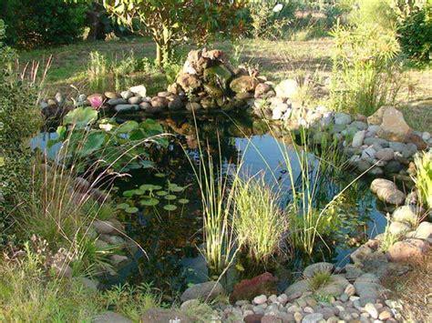 teli per laghetti da giardino laghetti artificiali laghetti dacqua progettazione giardini