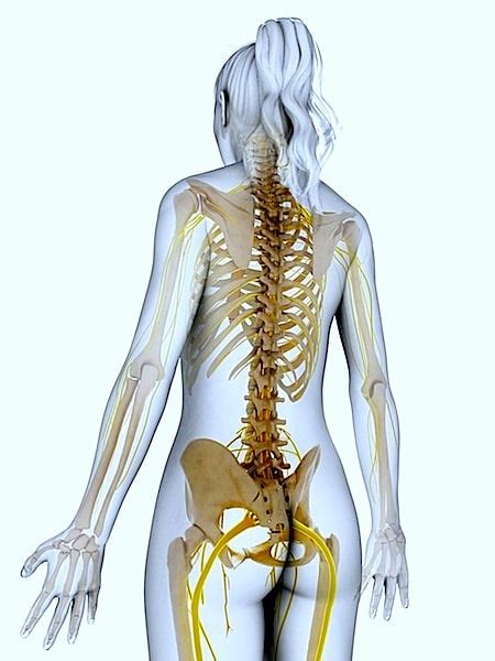 dolore al ginocchio a letto dolore all anca durante la corsa e a riposo a letto