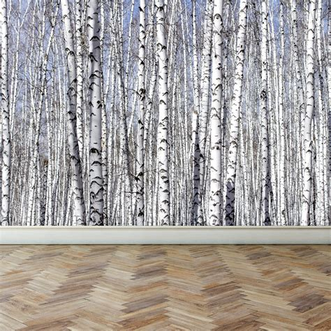 wallpaper for walls trees wall mural white birch trees peel and stick repositionable