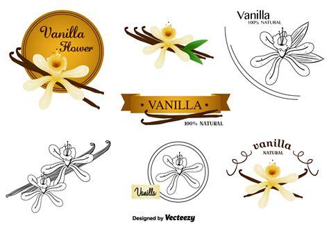 Set Vanela vanilla flower vectors set free vector