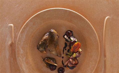cuisiner la palombe palombe cuisin 233 e en cocotte l 233 gumes et fruits par alain