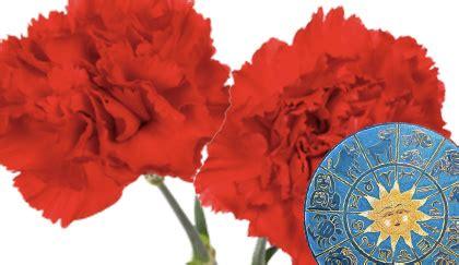 oroscopo dei fiori oroscopo dei fiori qual 232 la pianta sagittario leitv