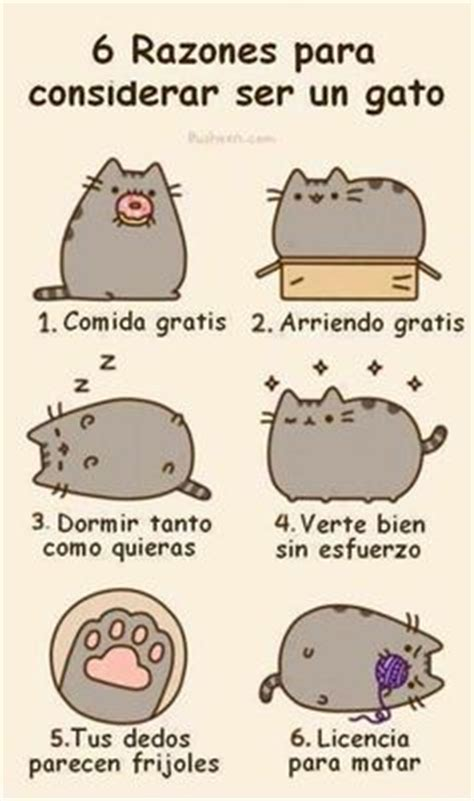 5 imagenes de ositos tiernos con frases cariosas 1000 images about gatitos tiernos on pinterest gatos