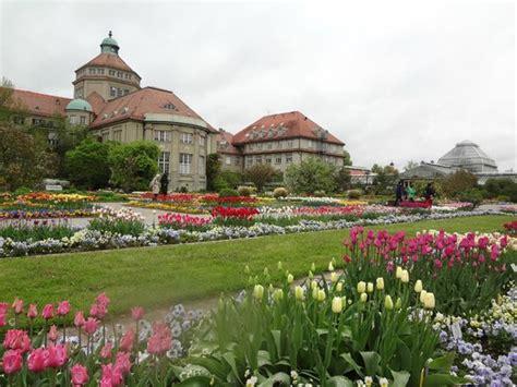 Munich Botanical Gardens в ботаническом саду мюнхена Picture Of Munich Botanical Garden Munich Tripadvisor