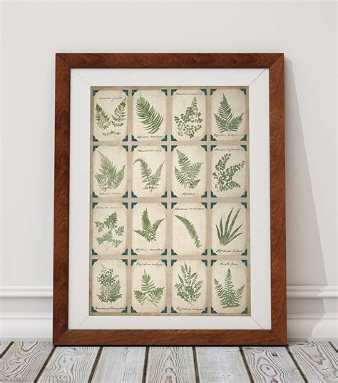 botanical home decor sweet pea botanical home decor