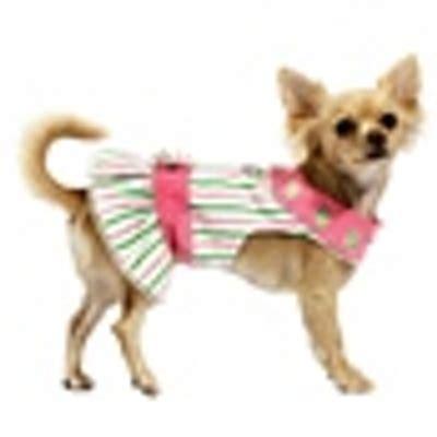 puppy clothes cheap cheap clothes cheapdogclothes