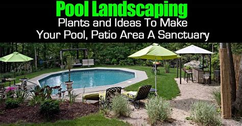 backyard pool landscaping pool landscape plants and ideas to make your pool patio