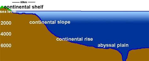 Depth Of Continental Shelf by Mar Eco Sea Structure