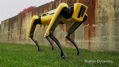 boston dynamics robot boston dynamics new spotmini robot looks ready for a walk