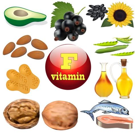 vitamin f vegetables vitamins and minerals to increase height fitness