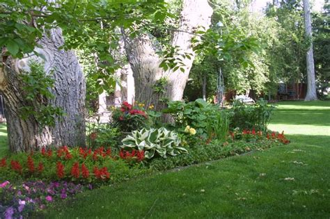 small shade garden ideas shade landscaping ideas pictures landscaping gardening