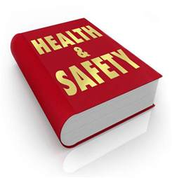 Make Revision Cards Online - health and safety government policy and literature