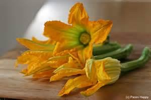 Squash Flower Recipe - recipe squash blossom grilled cheese panini happy 174