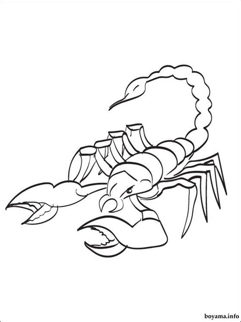 scorpion coloring pages preschool and kindergarten