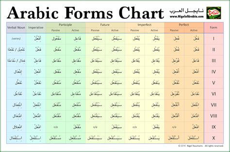verb pattern arabic verb forms download free printable graphics