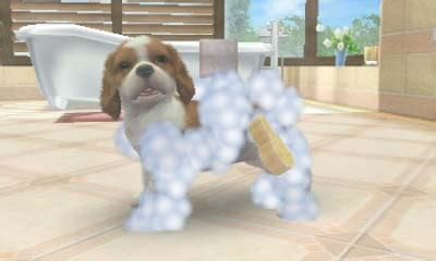 nintendogs and cats golden retriever breeds nintendogs cats golden retriever and friends rom cia rf