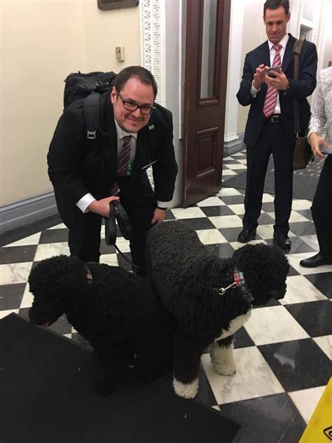 white house dogs bo and sunny precision medicine initiative