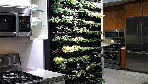 orto in casa come avere un mini orto in casa rafaschieri arredamenti