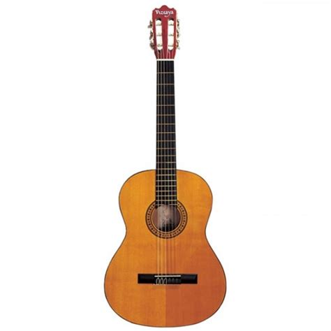 imagenes surrealistas de guitarras 5 ejemplos de instrumentos de cuerda ejemplos