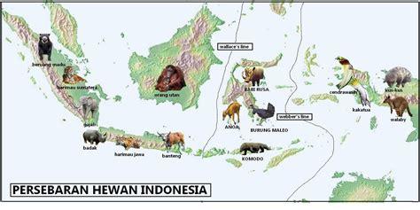 3 Di Indonesia Peta Persebaran Hewan Di Indonesia Geografi Regional Indonesia