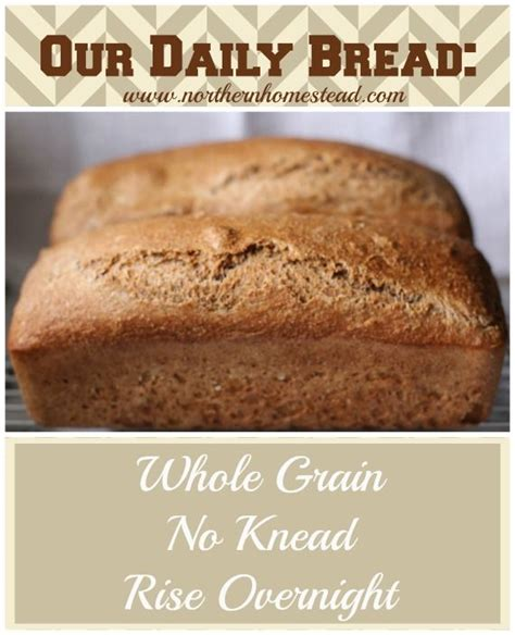 whole grains healthy or not 17 best images about bread on honey bread