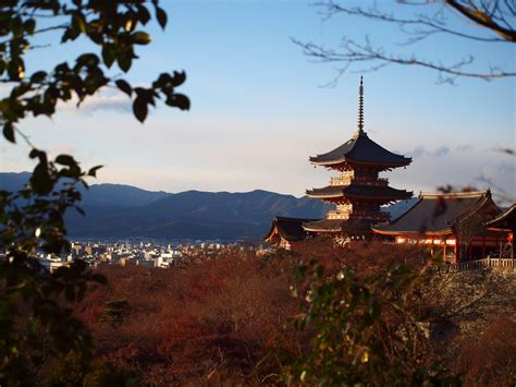 Top Mba In Japan by The 10 Best Bars In Kyoto Japan